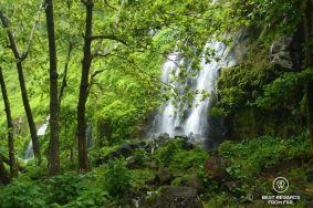 Waterfalls through foliage at Anse des Cascades on Reunion Island, France