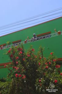 Muslim man on balcony of a green house with blooming tree in foreground in Bo Kaap, Cape Town