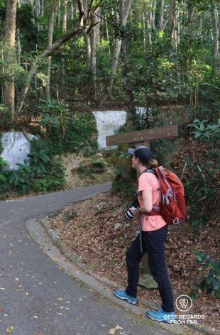 Hiking along the morning trail up Victoria Peak, Hong Kong Island