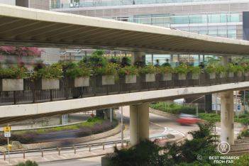 Multi-level transport on Hong Kong Island with walking paths and roads.