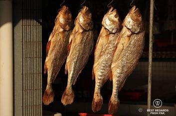 Fish drying in the sun, Tai O fishing village, Lantau Island, Hong Kong
