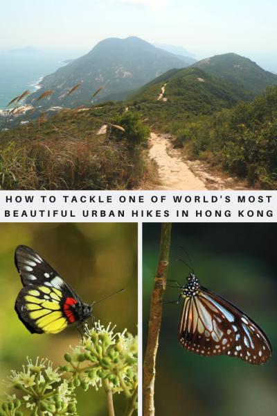 Dragon's Back hike- Pinterest - PIN -Hong Kong