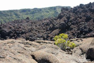 Three layers of volcanic stones, Piton de la Fournaise, Reunion Island, France