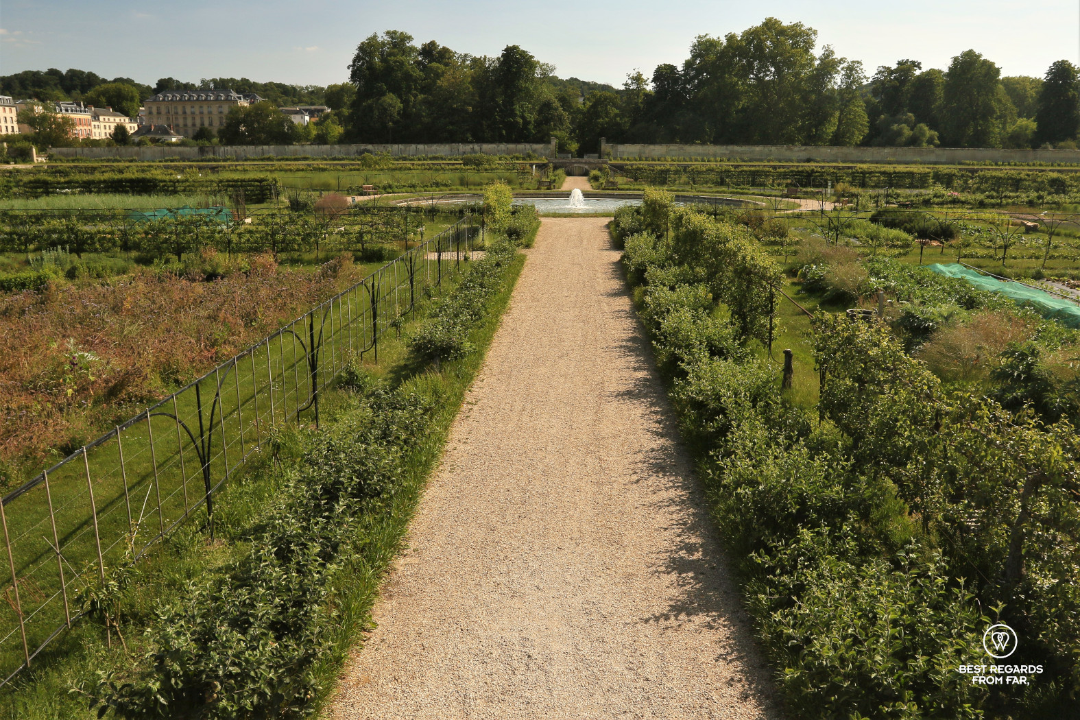 View on the central fountain in the King's Kitchen Garden in Versailles.