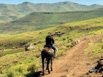 Horseback riding in Eastern Lesotho