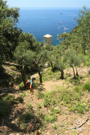 Hiking to San Fruttuoso amongst olive trees with the tower of the abbey and the Ligurian Sea in the background