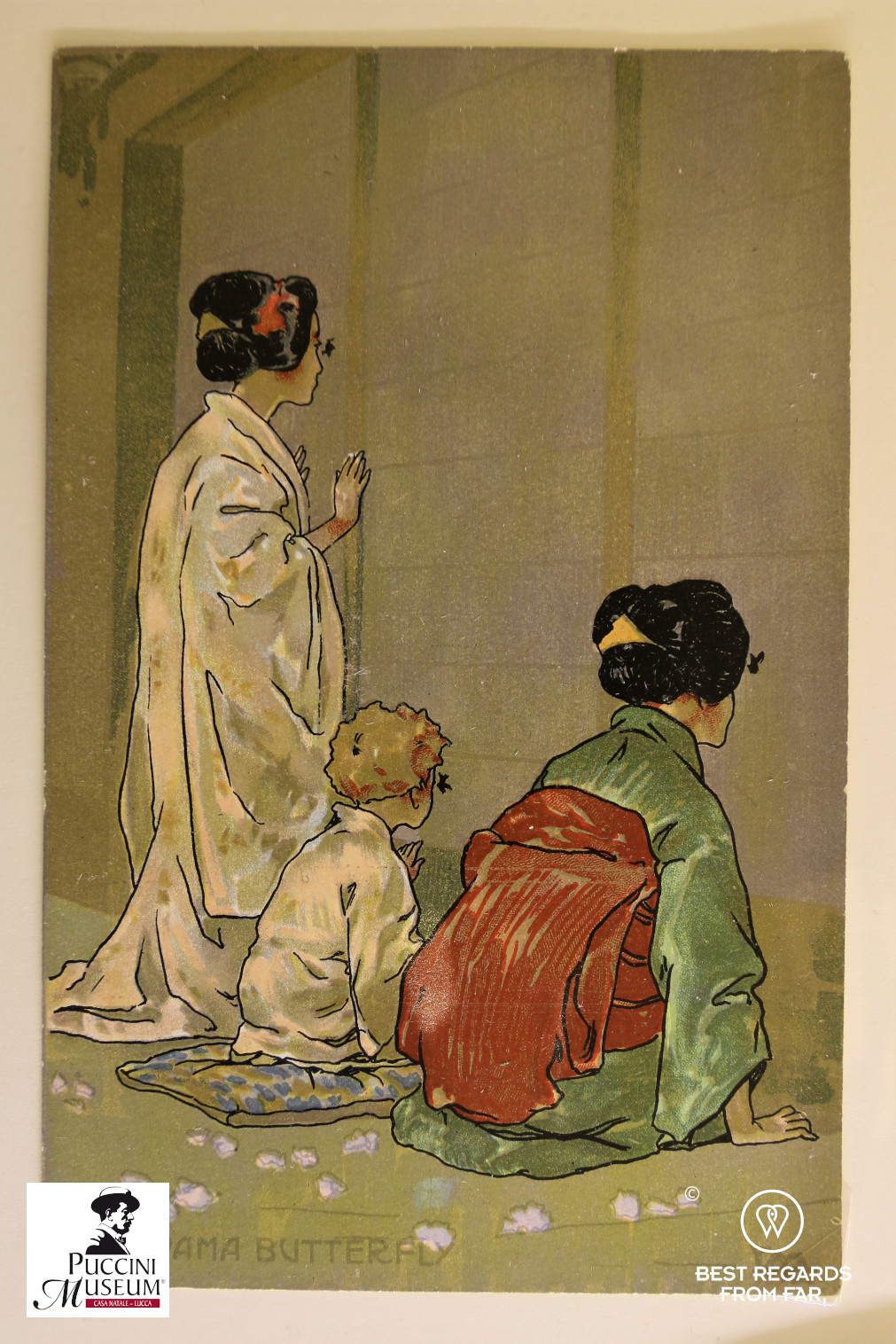 Madam Butterfly drawing, Puccini birth home museum, Lucca, Italy.
