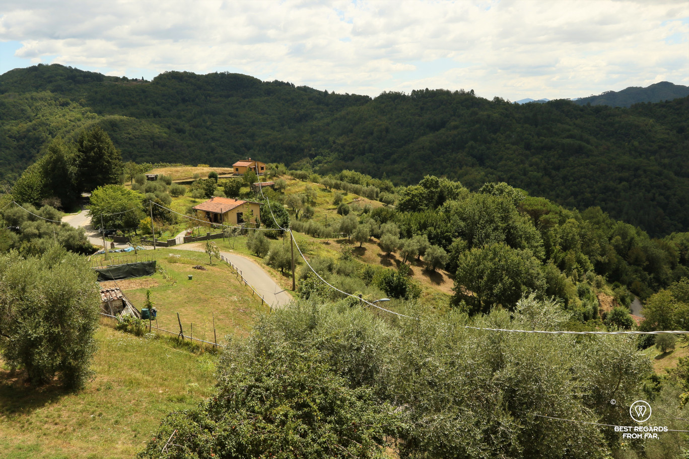 View from the village of Celle dei Puccini, Italy