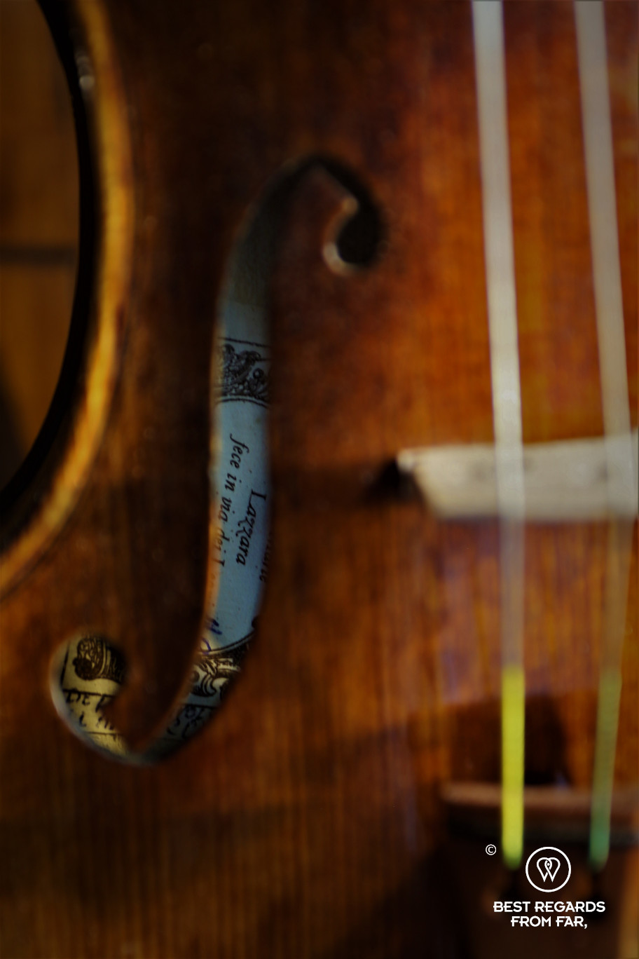 The crafts of Florence: making violins in Jamie Lazzara's workshop.
