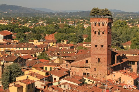 View on rooftops and a brick tower with trees on top of it and hills in the background