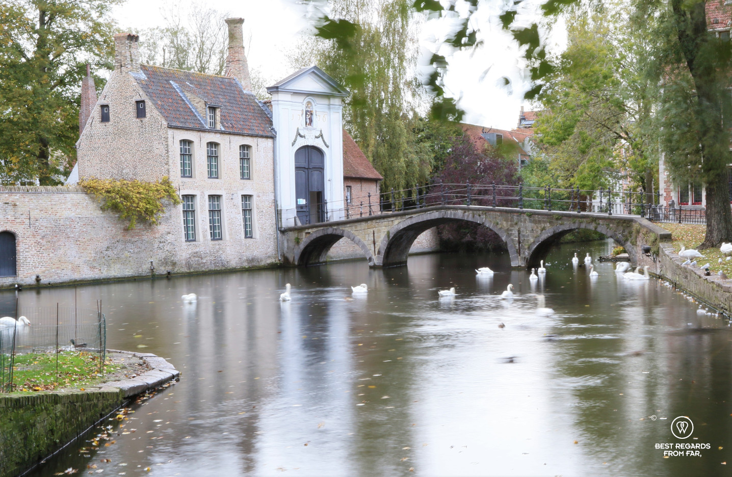 Beguinage with the swans, Bruges, Belgium