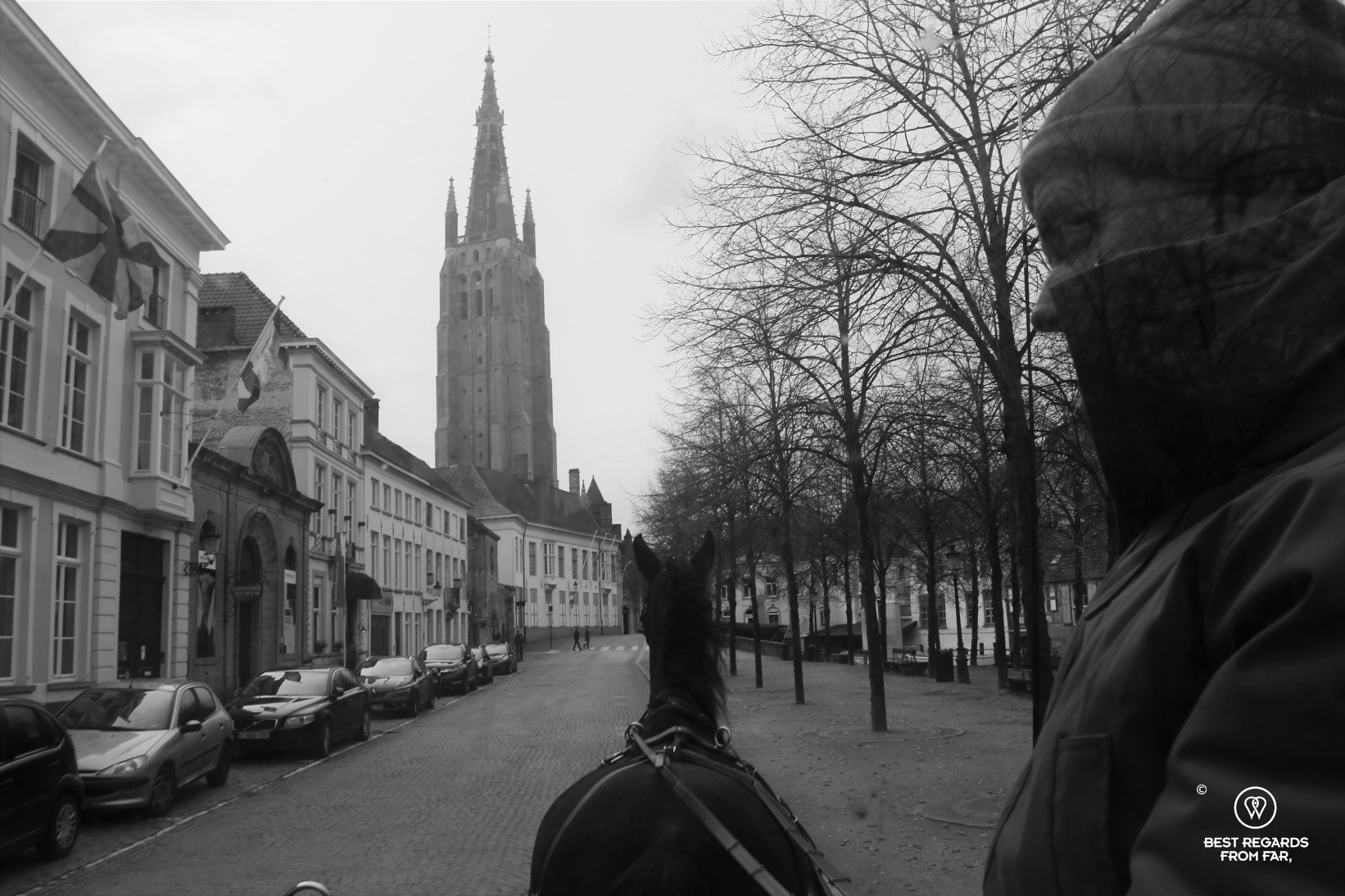 Horse carriage in Bruges.
