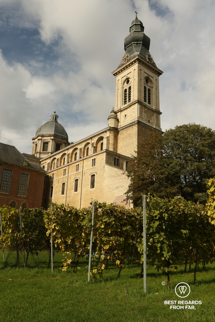 Saint Peter's Abbey with its vineyard, Ghent, Belgium