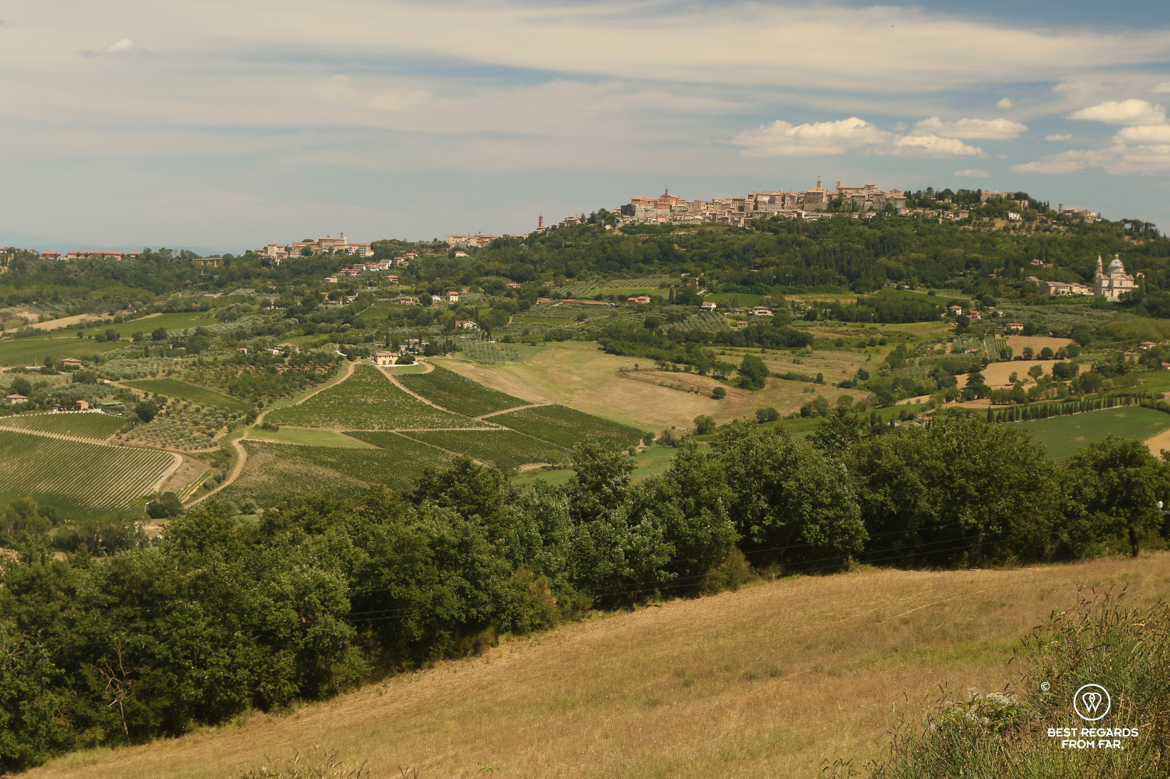 Medieval town of Montepulciano on a hill top with vineyards and blue skies