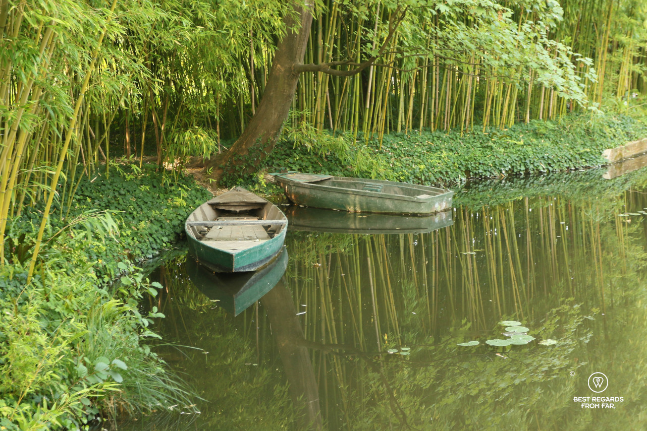 Rown boats on the water lily pond with bamboos in the background in Giverny