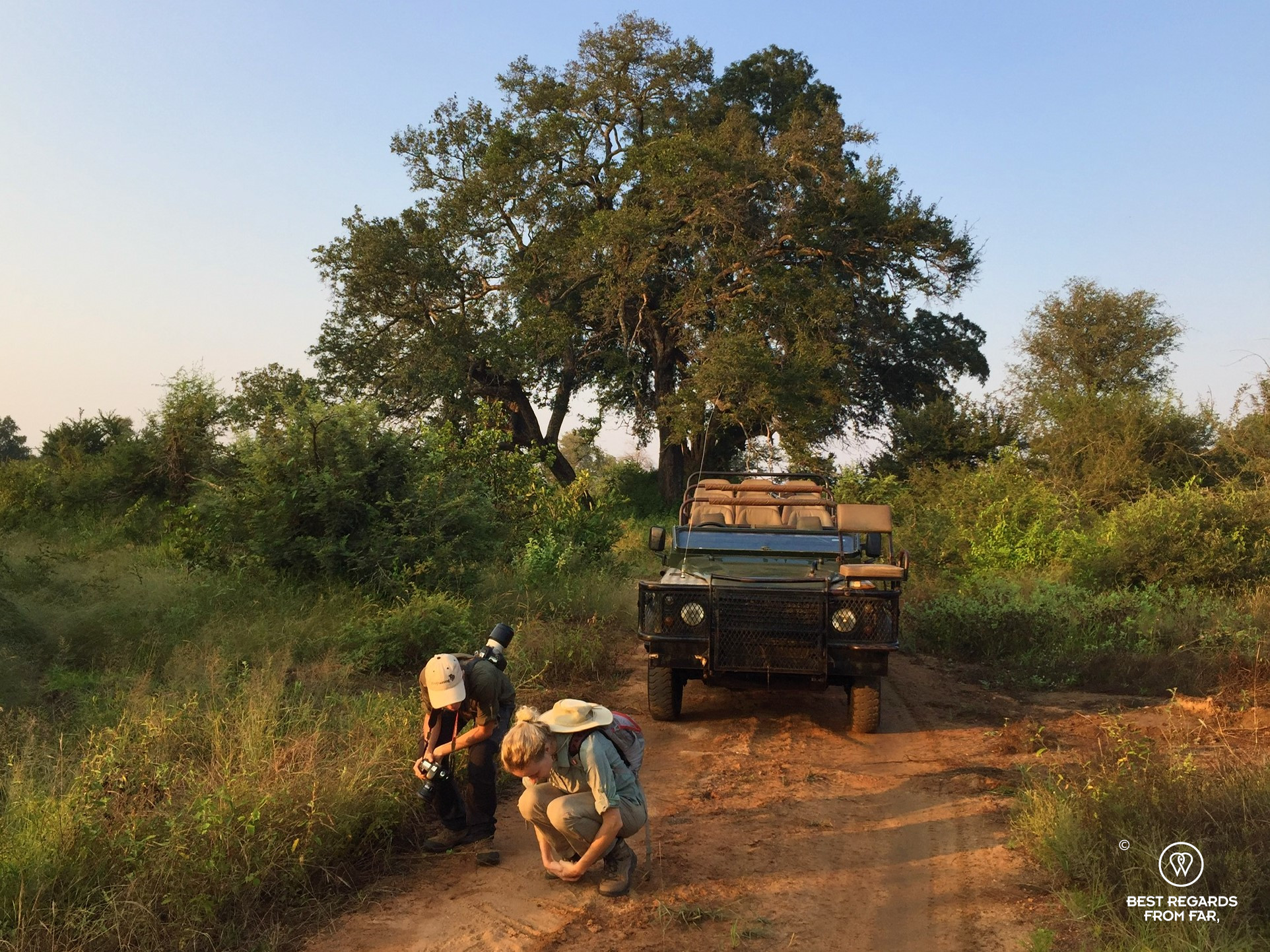 2 safari goers studying tracks in the Selati Game Reserve in Greater Kruger