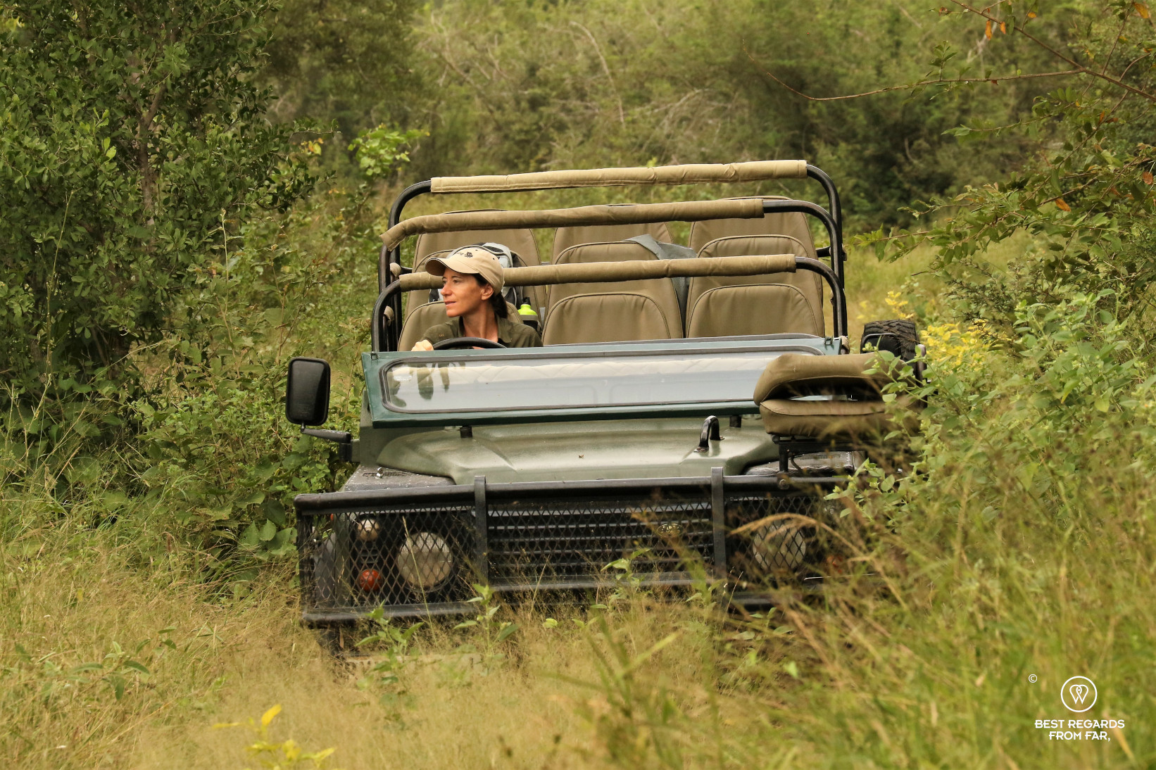 Author Claire Lessiau driving a Land Rover game drive vehicle through the African bush during the EcoTracker training