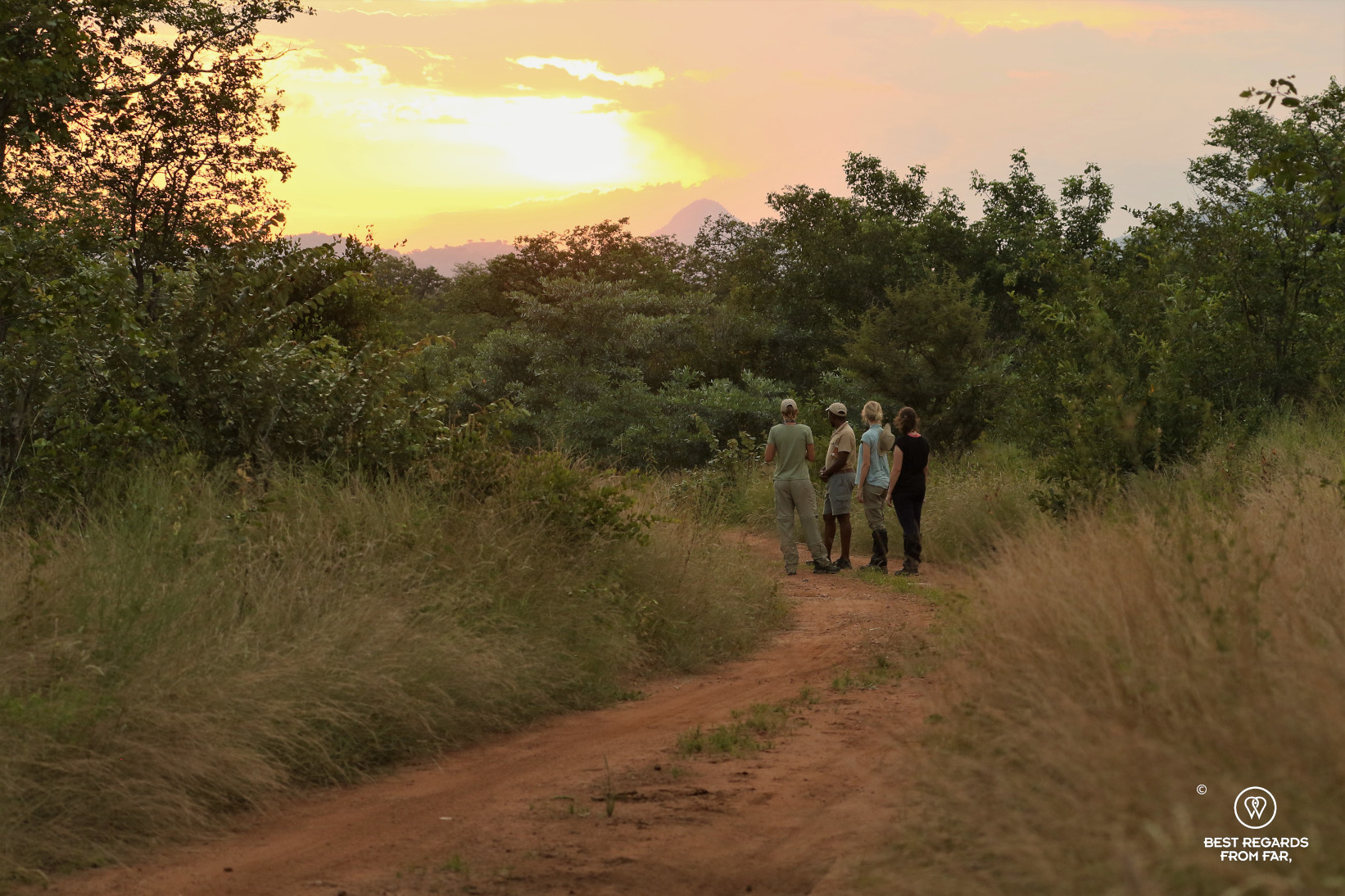 Students admiring a sunset in the African bush