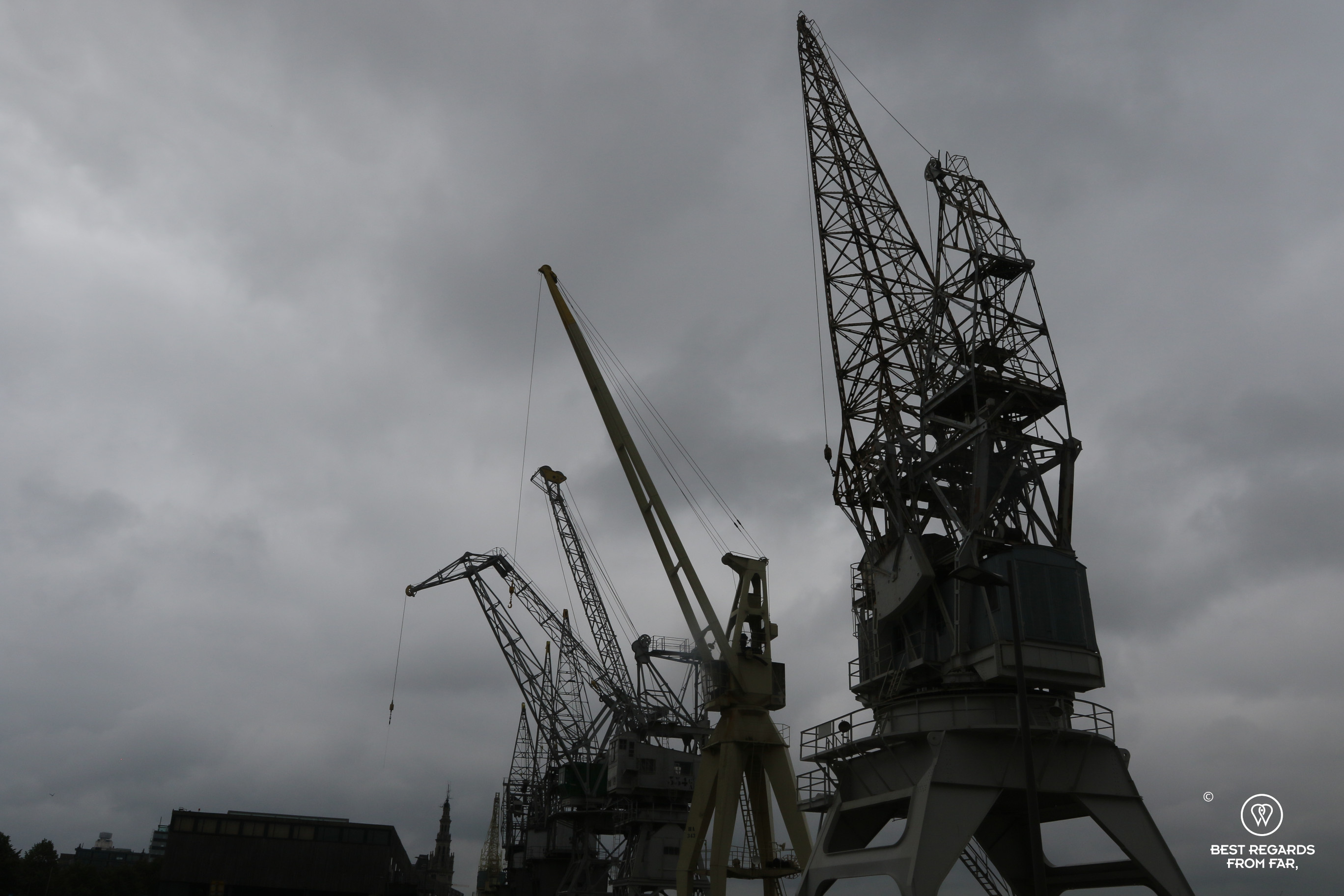 Black and white harbour cranes, Antwerp, Belgium
