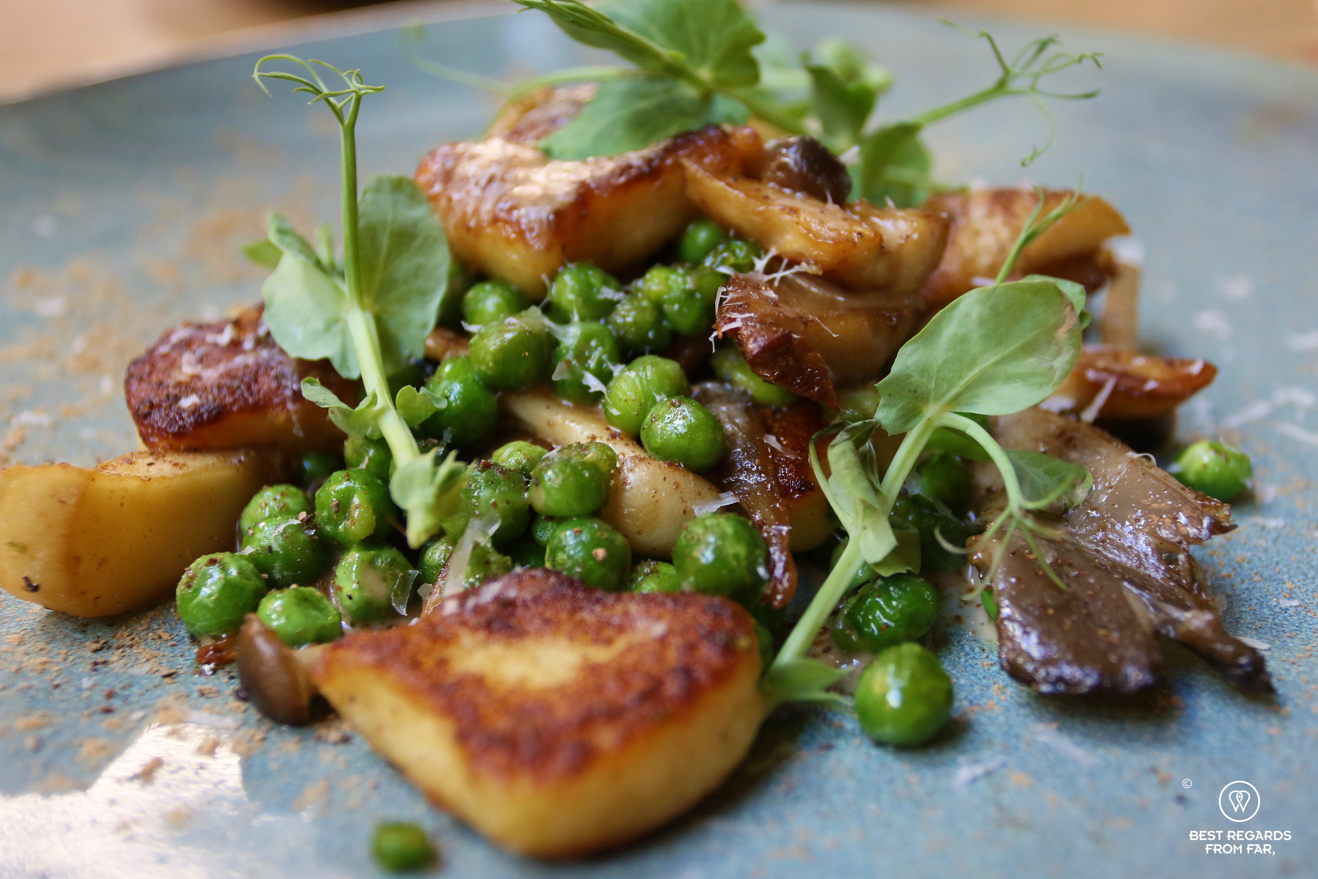 Close up of gnocchi with peas and mushrooms, La Cantina at Local, Cape Town
