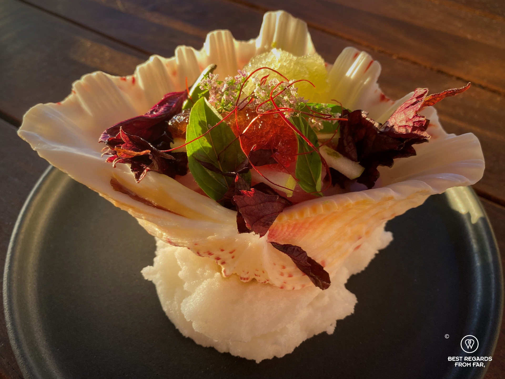 Fine-dining tapas presented in a shell at the Chefs Warehouse Tintswalo Atlantic, Hout Bay