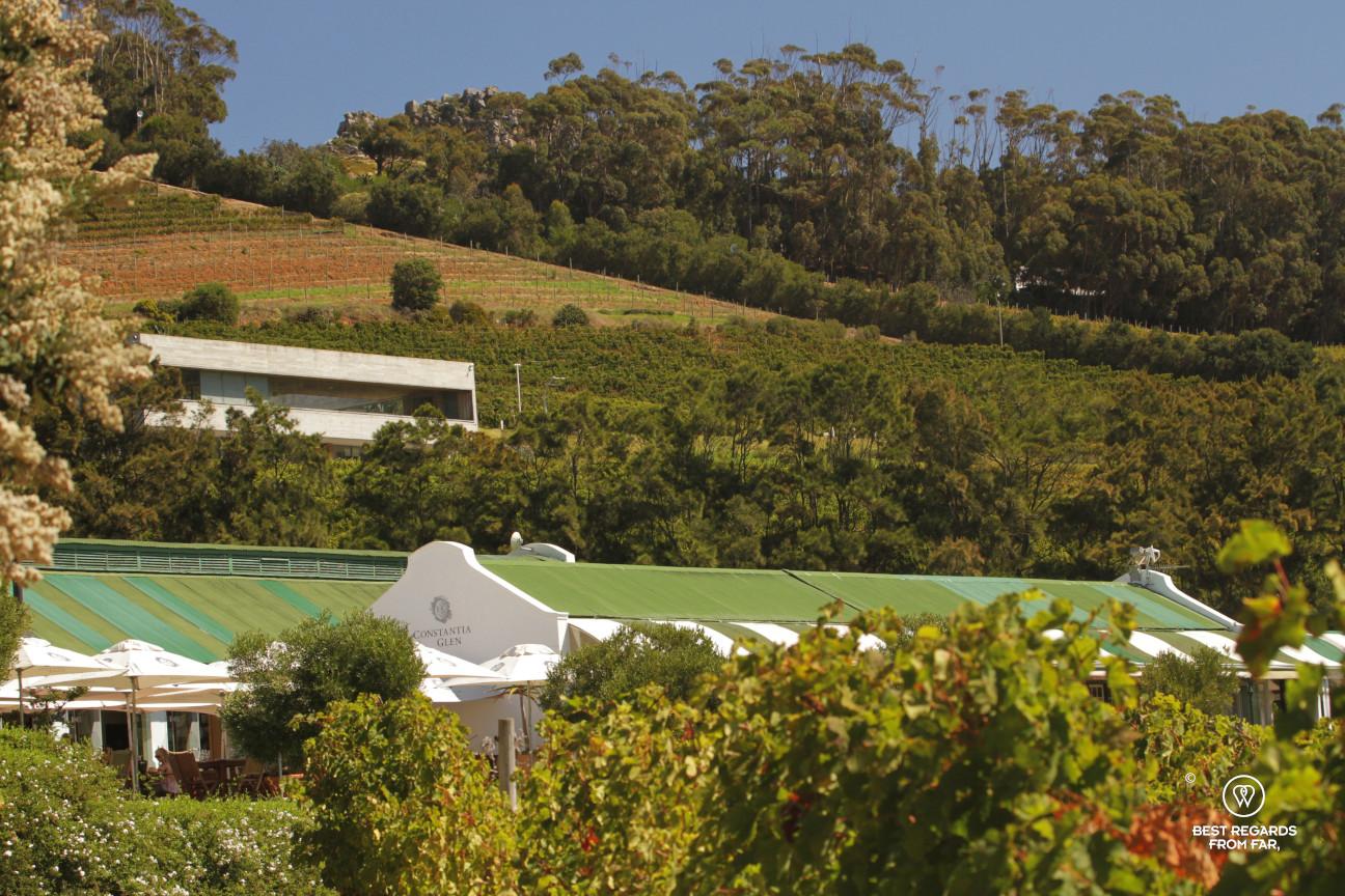 Glen Constantia wine estate, Constantia wine route, Cape Town