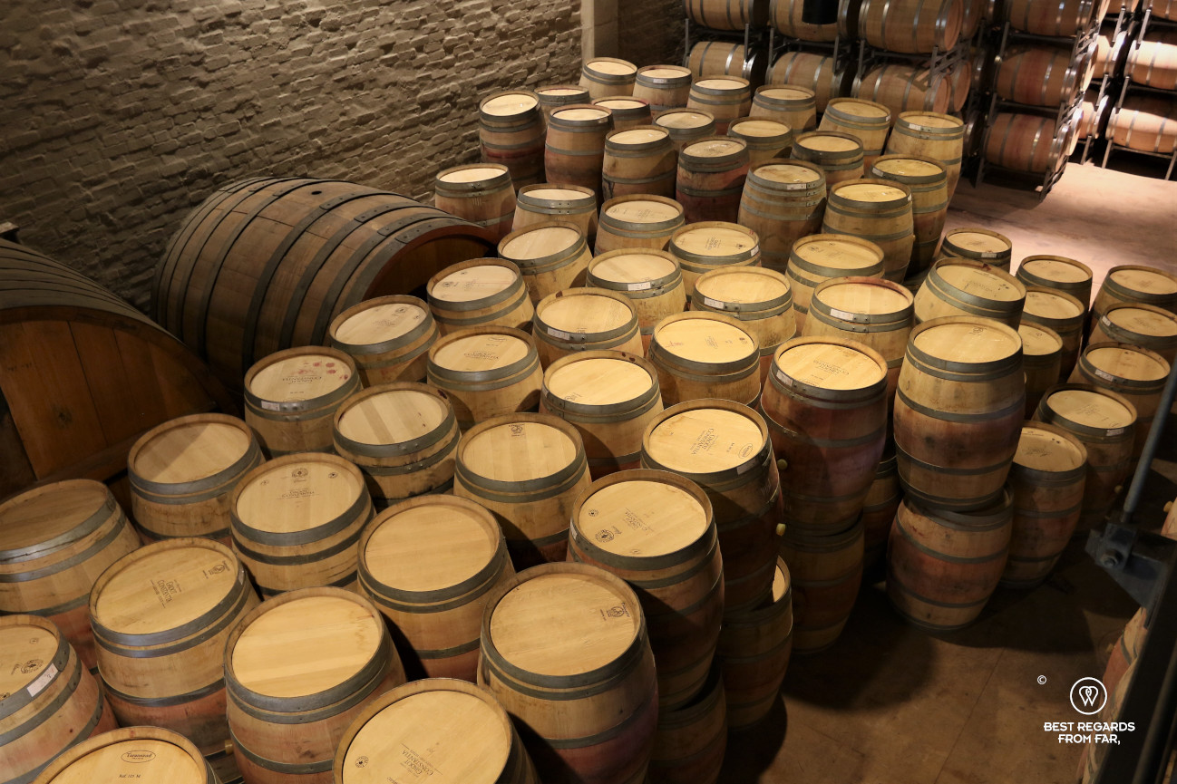 Groot Constantia wine cellar with French oak barrels, Constantia wine route, Cape Town