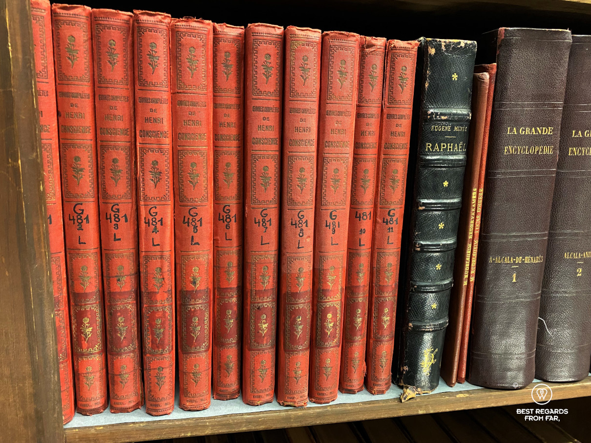 Collection of books by Hendrik Conscience