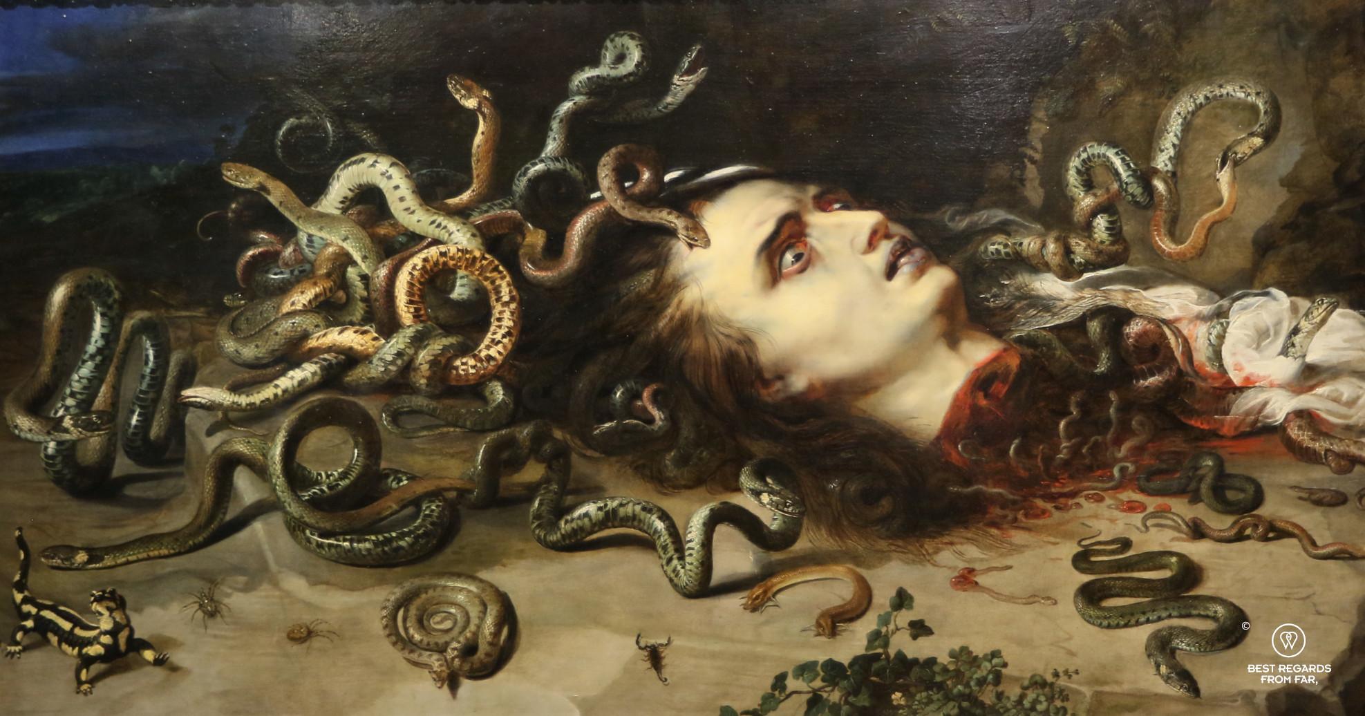 Head of Medusa by Rubens (1618), De Young Museum Legion of Honor, San Francisco