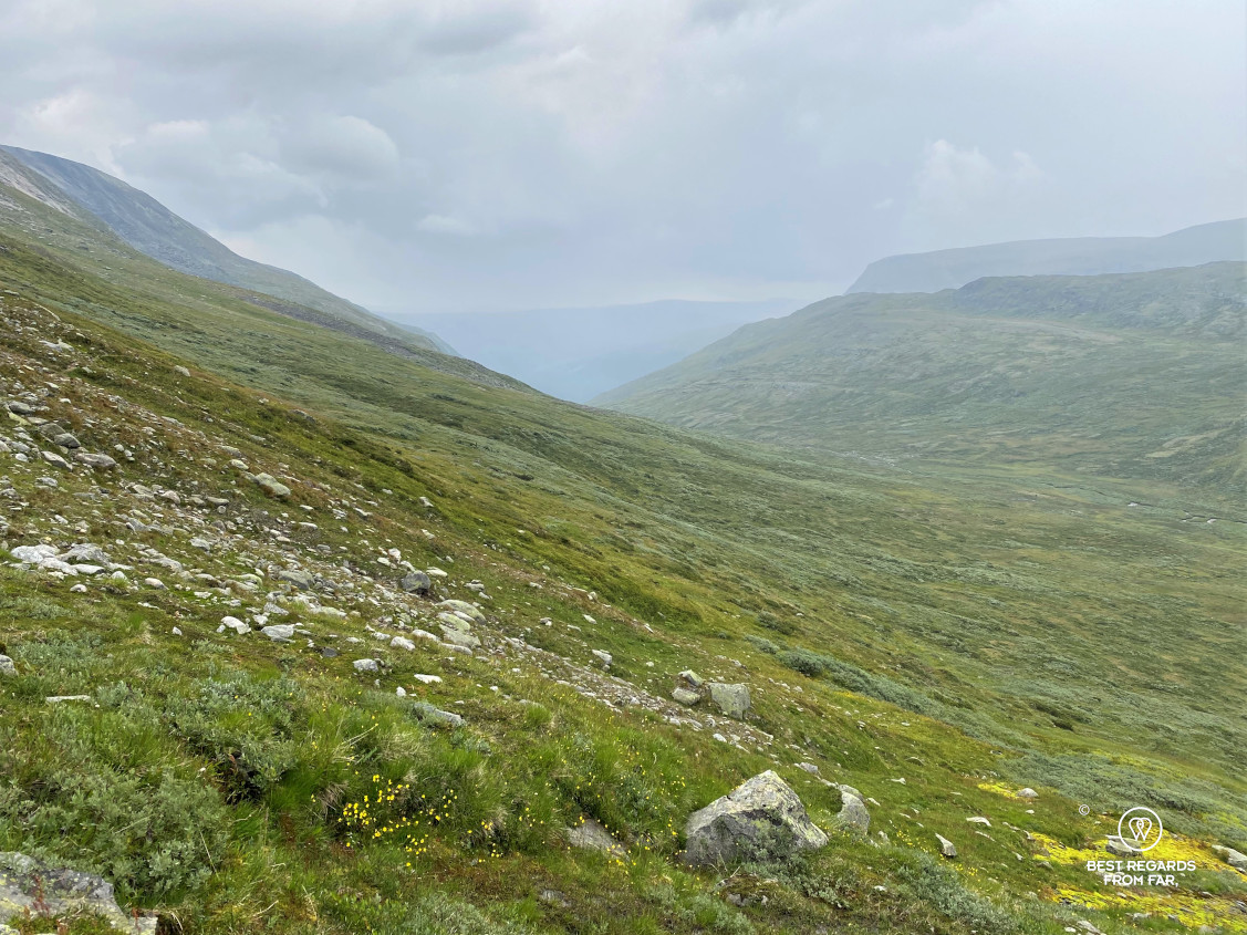 The mountains of the Dovrefjell-Sunndalsfjella National Park, Norway